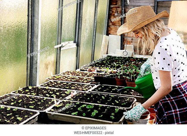 Young woman gardening in a greenhouse