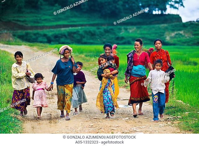 Children with their mothers  Family   Rice field  Pokhara Valley  Himalaya  Nepal