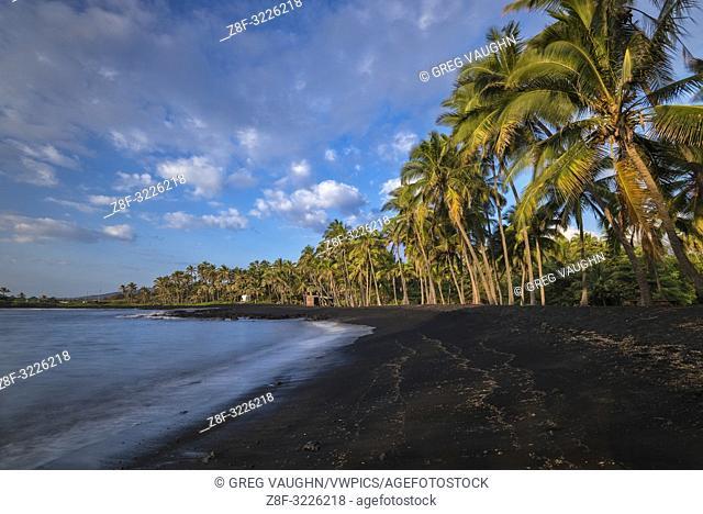 Punalu'u Black Sand Beach in the Ka'u District on the Big Island of Hawaii