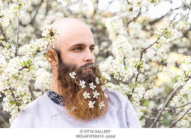 Portrait of hipster with white tree blossoms in his beard