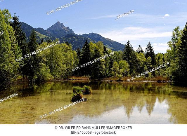 Lake Quellsee in spring, Wendelstein mountain at the back, landscape near Hammer in the Leitzachtal valley, near Bayrischzell, Upper Bavaria, Bavaria, Germany
