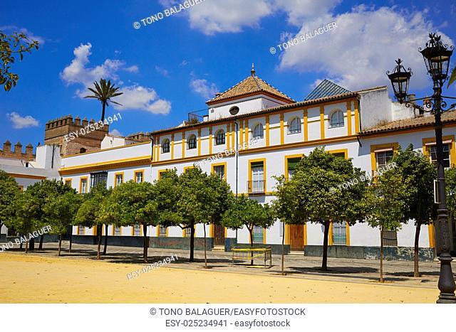 Seville Real Alcazar patio de Banderas Sevilla spain andalusia