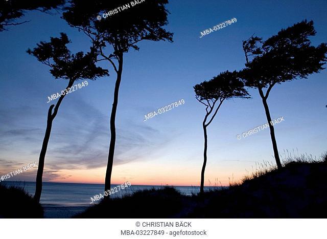 Peninsula Fischland-Darss-Zingst, Baltic coast, Mecklenburg-West Pomerania, Germany