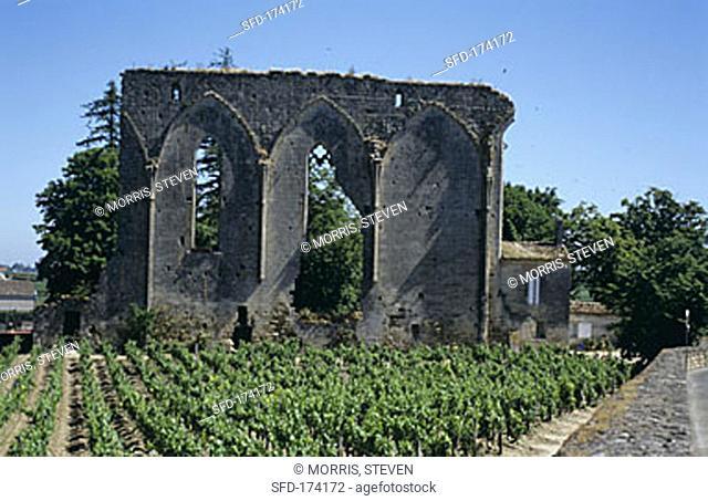 Ruins & vineyards in St. Emilion wine producing area, Bordeaux