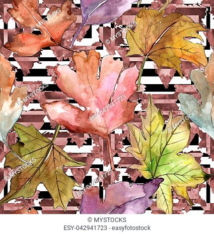 Leaves of hawthorn pattern in a watercolor style. Aquarelle leaf for background, texture, wrapper pattern, frame or border