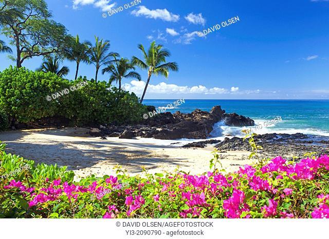 Flowers at Secret Beach, Maui, Hawaii