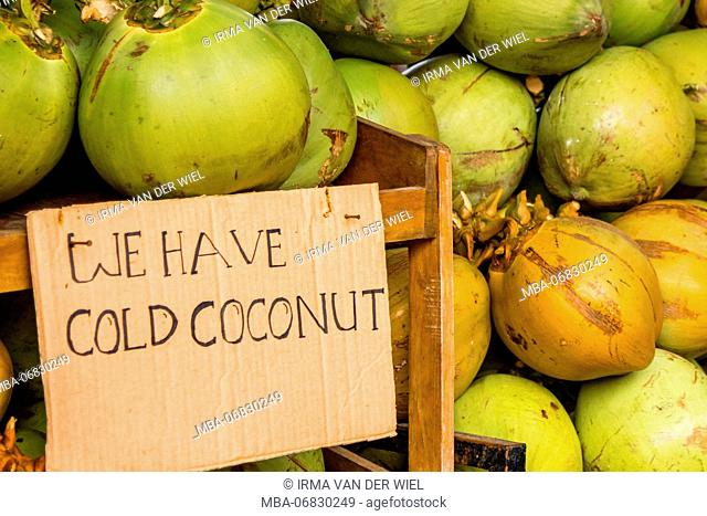 Sign made by carton close the text We have cold coconut; refreshing coconuts on Bali