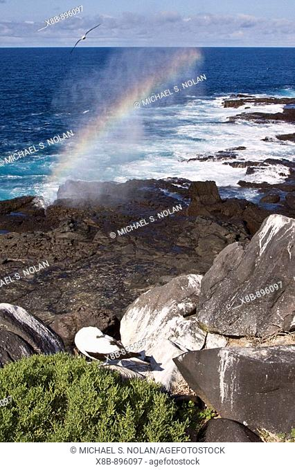 Fun and interesting scenery in the Galapagos Island Archipelago, Ecuador, Pacific Ocean