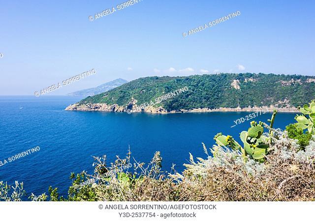 View of Vivara Natural Reserve, Procida, Italy