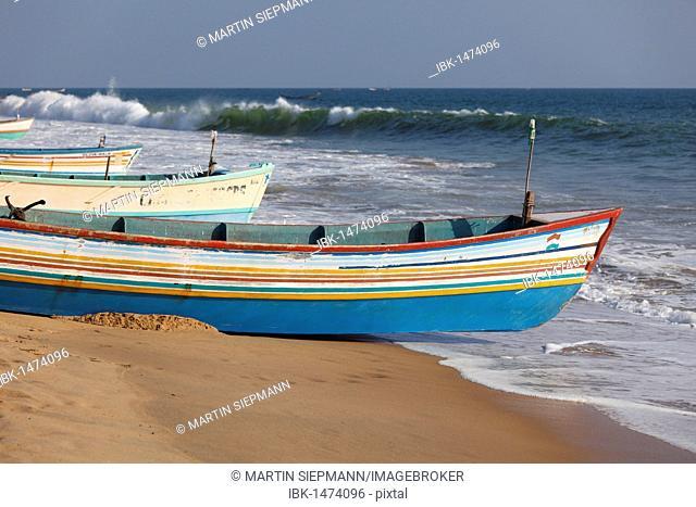 Colorful fishing boats on the beach, Somatheeram Beach, Malabarian Coast, Malabar, Kerala, India, Asia