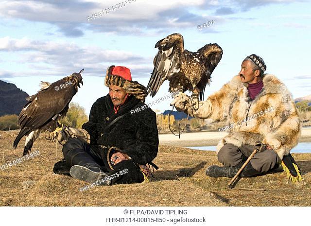 Kazakh hunters with Golden Eagles Aquila chrysaetos, Altai Mountains, Bayan-Ulgii, Western Mongolia, october