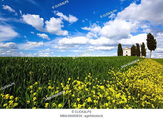 Vitaleta chapel, Pienza, Orcia valley, Siena province, Tuscany, Italy