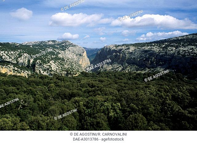 Su Gorroppu Gorge, Gulf of Orosei and Gennargentu National Park, Sardinia, Italy