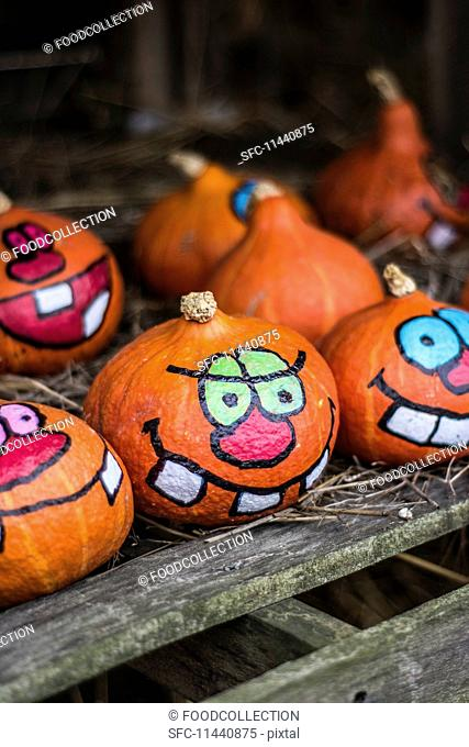 Painted Halloween pumpkins on a farm
