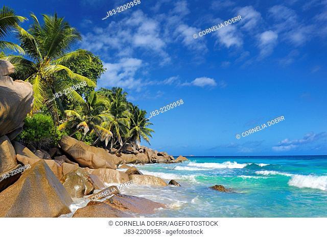 Tropical beach Anse Patates, La Digue Island, Seychelles, Indian Ocean , La Digue Island, Seychelles, Indian Ocean