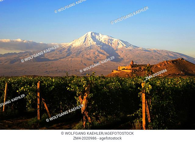ARMENIA, NEAR YEREVAN, VIEW OF KHOR VIRAB MONASTERY WITH MT. ARARAT, VINEYARD