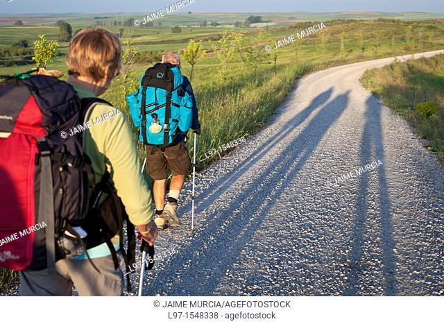 Long shadows of pilgrims walking the Camino de Santiago