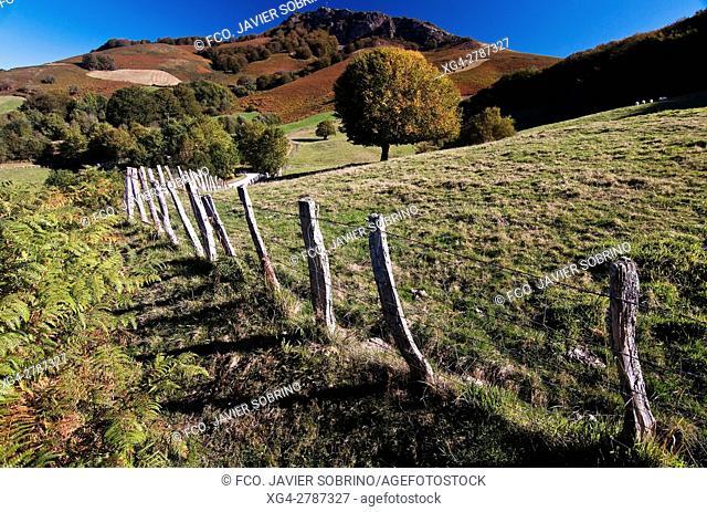 Orabidea. Baztán - Navarra. Pirineos. Spain