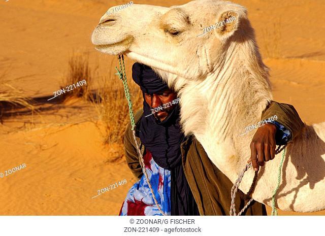Tuareg Nomade mit weissem Reitdromedar, Akakus Gebirge, Libyen / Tuareg nomad with white Mehari dromedary, Acacus Mountains, Libya