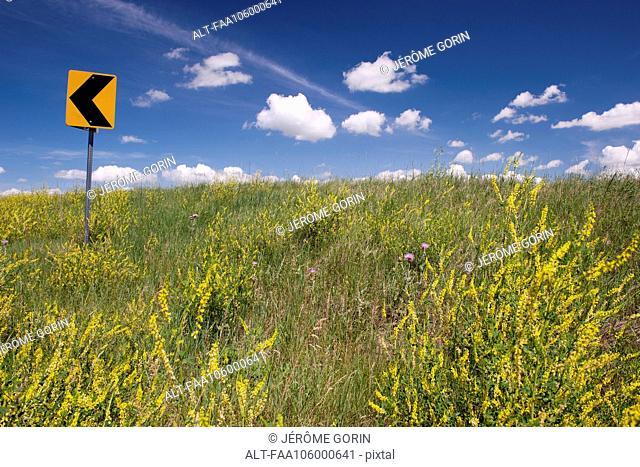 Road sign on scenic hillside