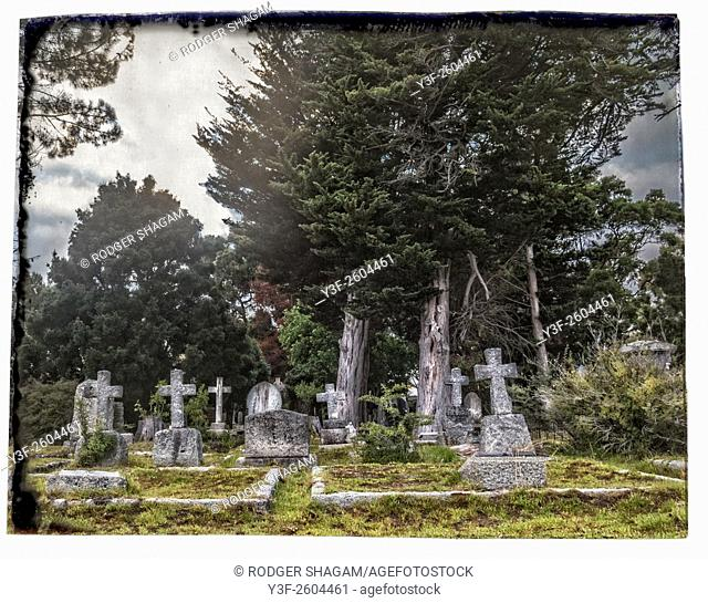 Cemetery under pine trees. With border. Constantia, Cape Town, South Africa