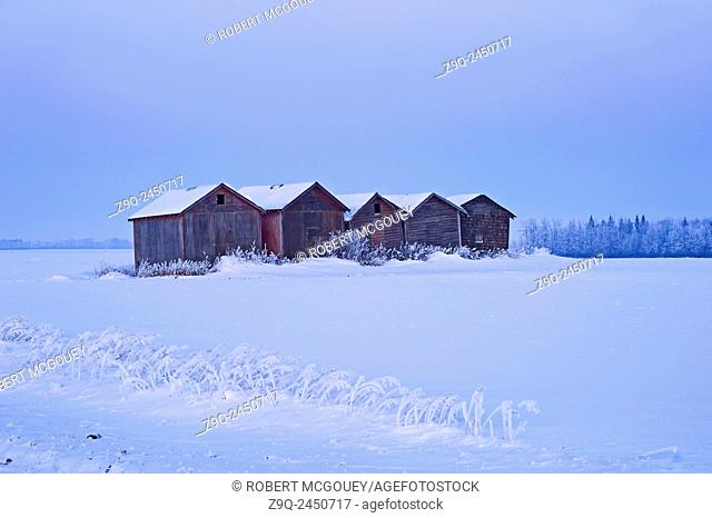 Wooden grain storage sheds on a farm field covered with a blanket of winter snow in rural Alberta. Canada