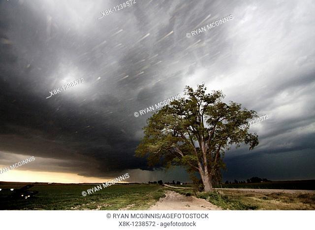 A lone tree stands against a thunderstorm on the rural Nebraska prairie near Scottsbluff, Nebraska, USA, June 7, 2010