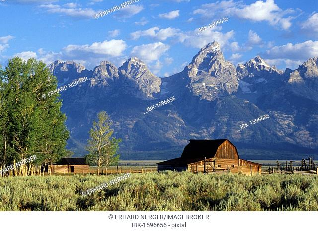 Old farm in front of the Grand Tetons mountains, Wyoming, USA