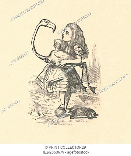'Alice tries to play croquet with a flamingo as a mallet', 1889. Artist: John Tenniel