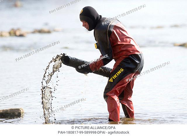 17 August 2018, Germany, Magdeburg: The diver Thomas Boettcher from the Water and Shipping Authority removes scrap and bulky waste at the inlet of the gauge...