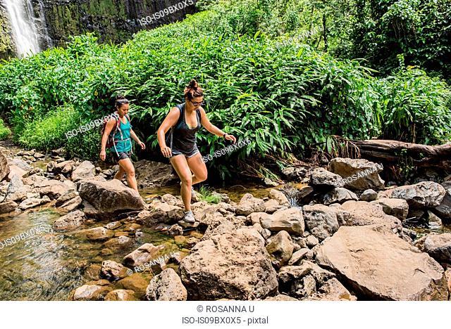 Hikers crossing stream, Waipipi Trail, Maui, Hawaii