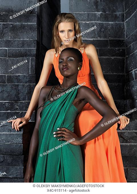 Two beautiful sexy women in elegant dresses  High fashion