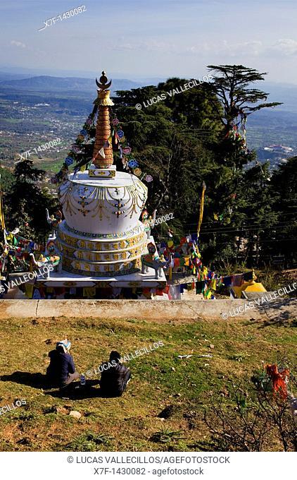 Stupa in Lhagyal Ri,near Tsuglagkhang complex,McLeod Ganj, Dharamsala, Himachal Pradesh state, India, Asia