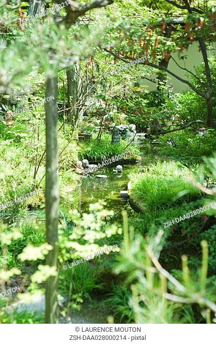 Stream in Japanese garden