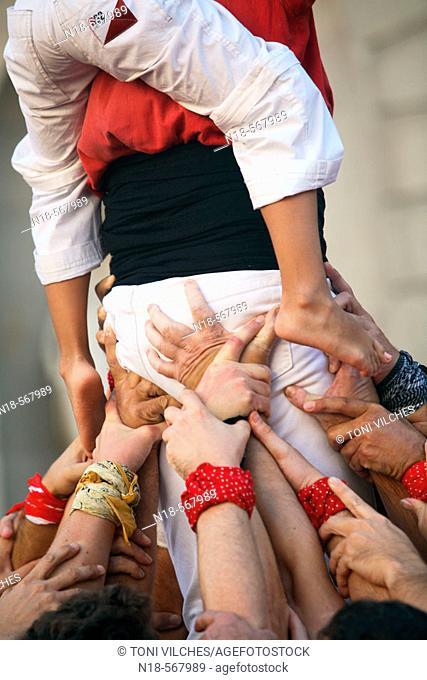 'Castellers' (catalan tradition), human tower during the Mercè Festival in Plaça de Sant Jaume, Barcelona. Catalonia, Spain