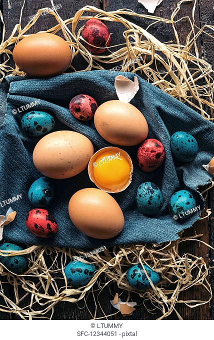 Colorful Easter eggs on wooden background