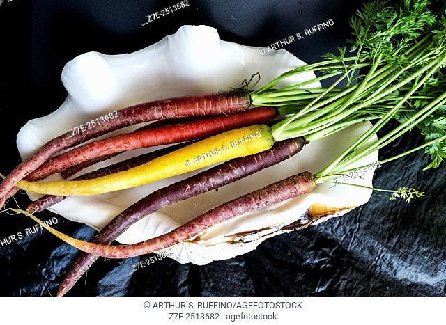 Close-up of multi-colored (rainbow) organic carrots in a Tridacna clam shell
