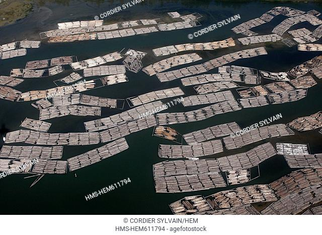 Canada, British Columbia, Vancouver, floating logs aerial view