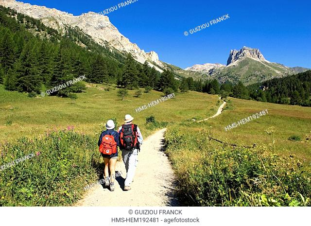 France, Hautes Alpes, Brianconnais area, Vallee Etroite, hiking starting point to the Mont Thabor Grand Seru in the background