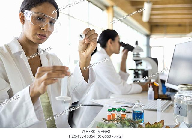 Female botanist working in laboratory