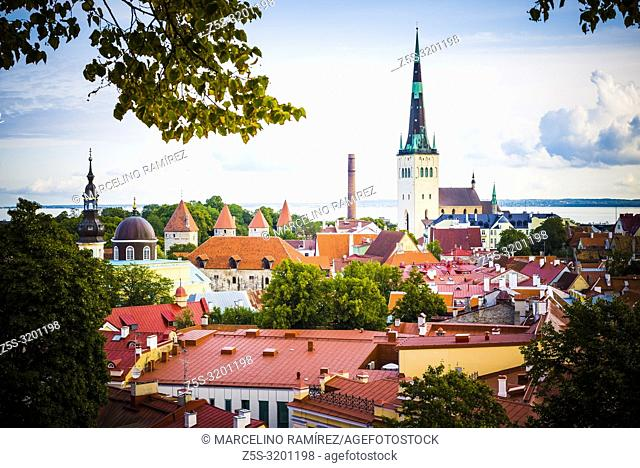 The old city of Tallinn seen from a lookout on Toompea hill. Tallinn, Harju County, Estonia, Baltic states, Europe