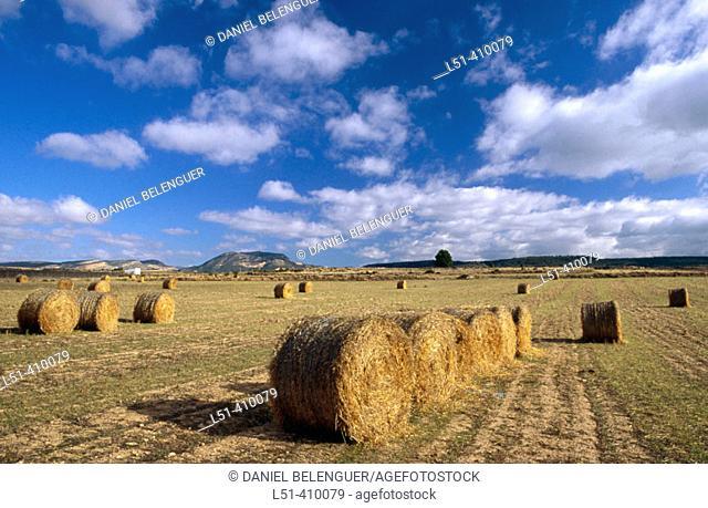 Grain hay bales. Titaguas, Los Serranos. Valencia province, Spain