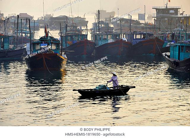 Vietnam, Quang Ninh Province, Halong Bay listed as World Heritage by UNESCO, fishing boats in the port of Cai Rong