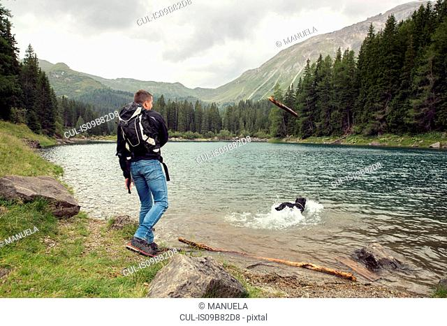 Man with dog hiking by lake, Tirol, Steiermark, Austria, Europe