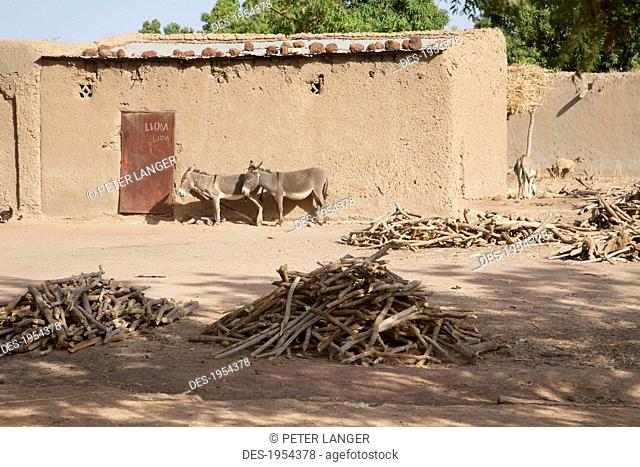 Mud Houses In A Village On The Bamako-Djenne Road, Mali