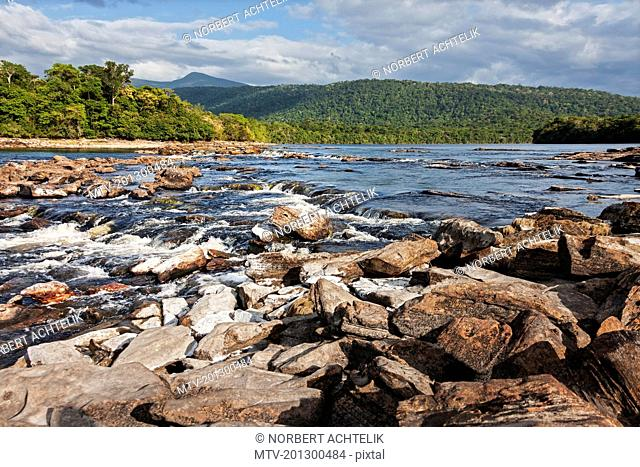 Forest at riverside and mountains in background, Carrao river, Canaima National Park, Venezuela