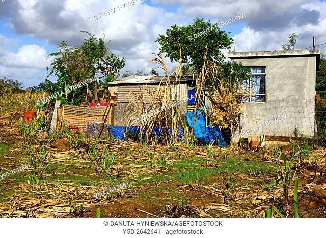 poor farm near Arsenal, Pamplemousses, Mauritius, Africa