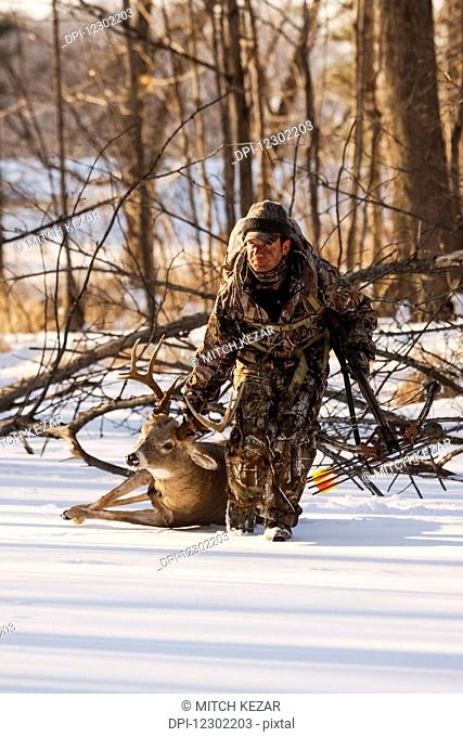 Whitetail Deer Hunter Drags Deer Out Of Field