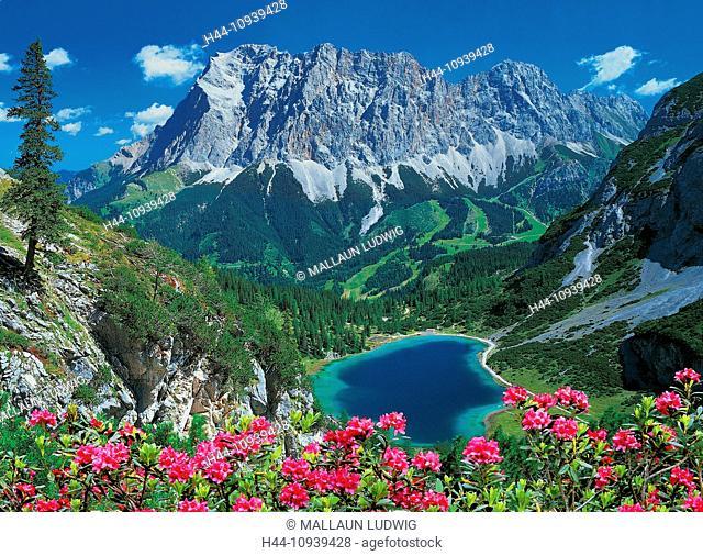 Austria, Europe, Tyrol, Ausserfern, Ehrwald, Alp, Seebensee, Zugspitze, lake, mountain, wood, forest, Zuntern, water, view, cliff, cliff wall, nature