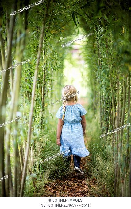 Girl walking in bamboo grove